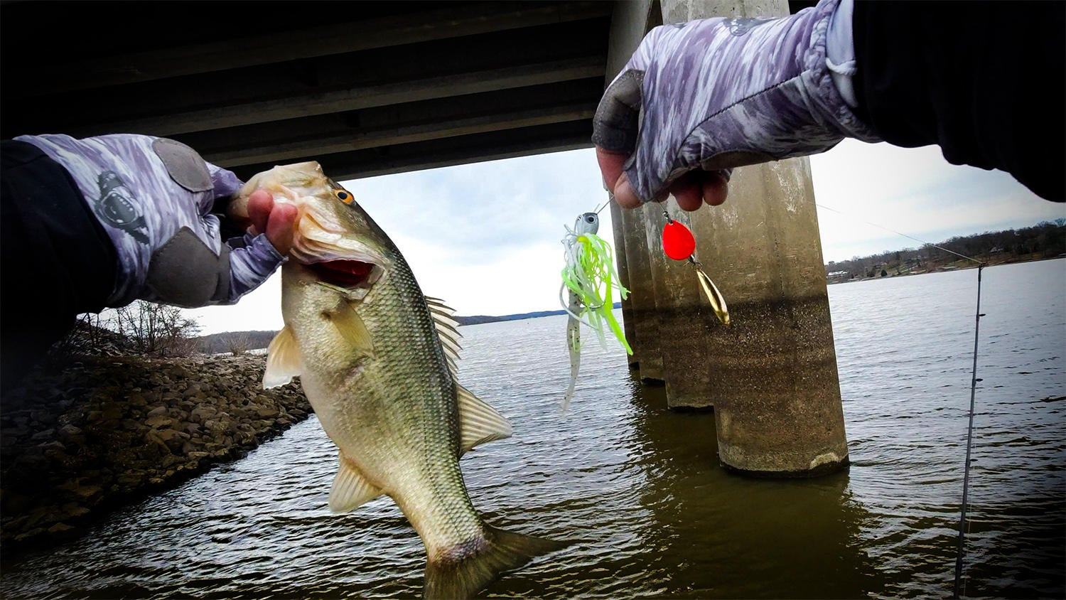 Where to Focus Your Spinnerbait Fishing in Dirty Water