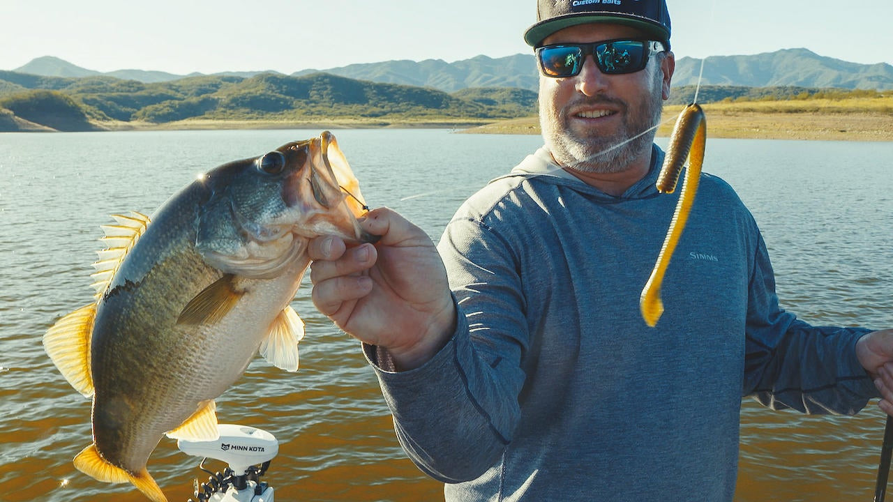 The Rise of the Neko Rig Finesse Bass Tactic