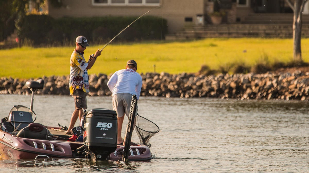 3 Ways to Catch More Summer Bass as a Co-Angler