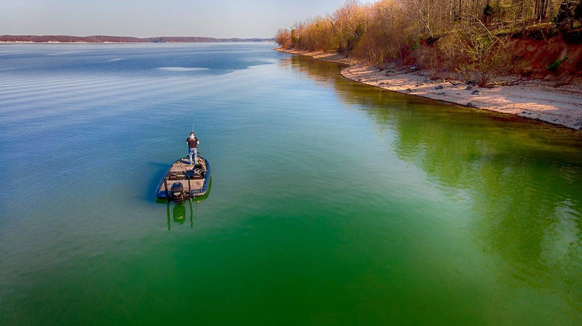 What's Going on with the Fishing on Kentucky Lake [UPDATED July 2019]