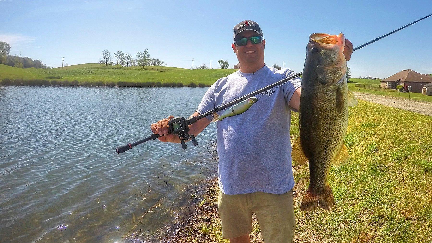 Bank Fishing with Big Swimbaits for Bass