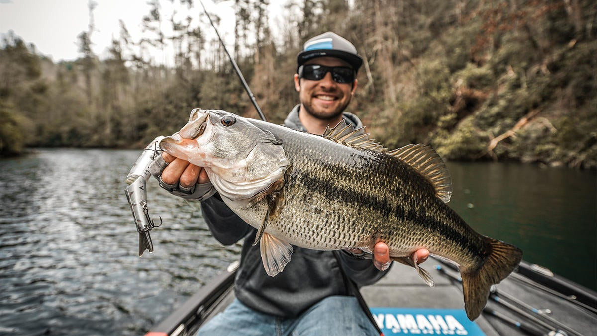 Behind the Scenes: A Real Look at Designing a Bass Fishing Lure