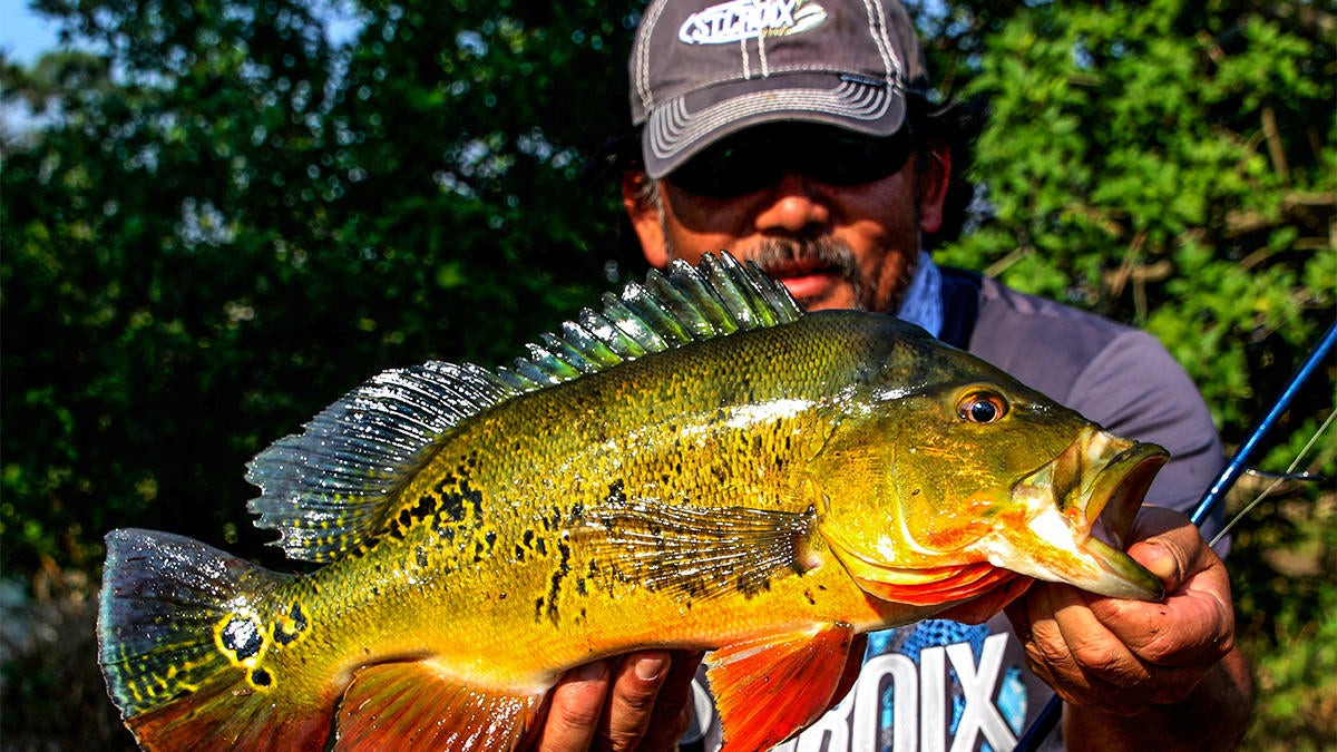Bucket List Fishing Trip: Head South for Tropical Exotics
