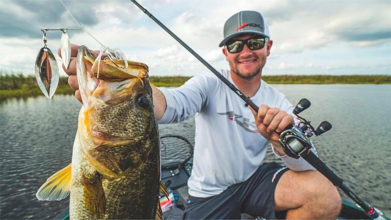 Spinnerbait Comeback – When and How to Use (4 Tips)