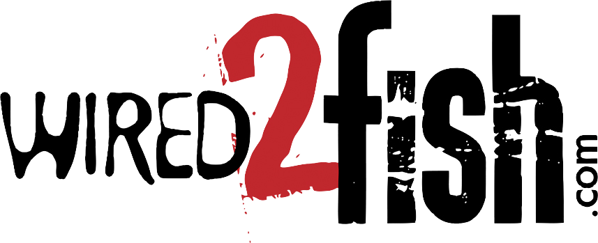 logo-wired2fish