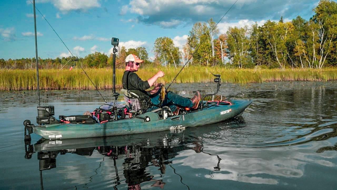 Spinnerbait Basics for Bass in Lily Pads | Summer to Fall Transition