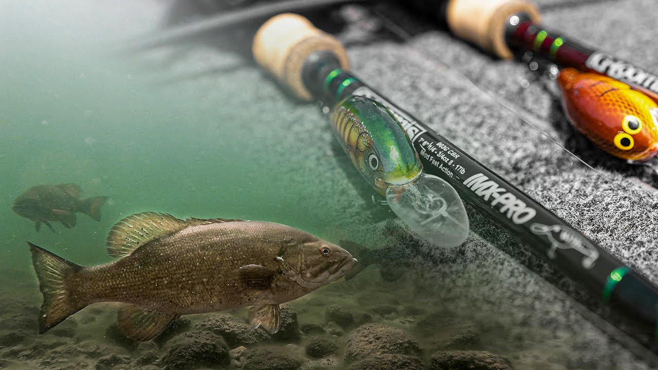 Gussy's Shallow Diving Crankbait Strategy for Smallmouth Bass