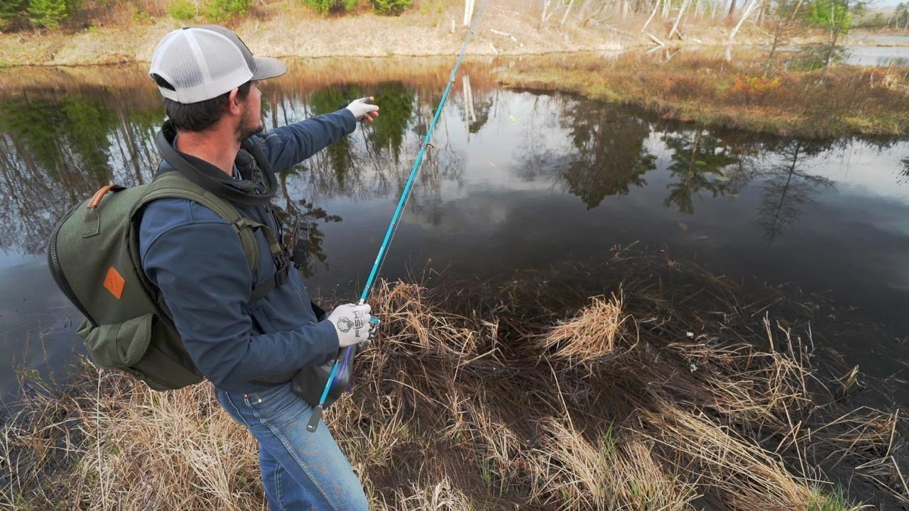 Catch More Spring Panfish with These Bank Fishing Tips