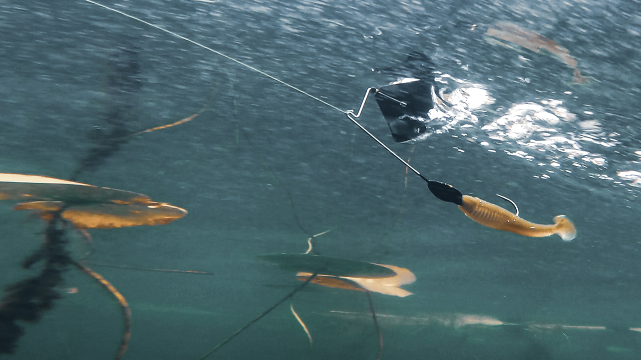 5 Fall Buzzbait Tips to Catch Active Bass