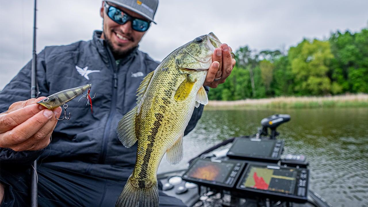 4 Tips to Catch Bass on Topwater Lures During the Bluegill Spawn