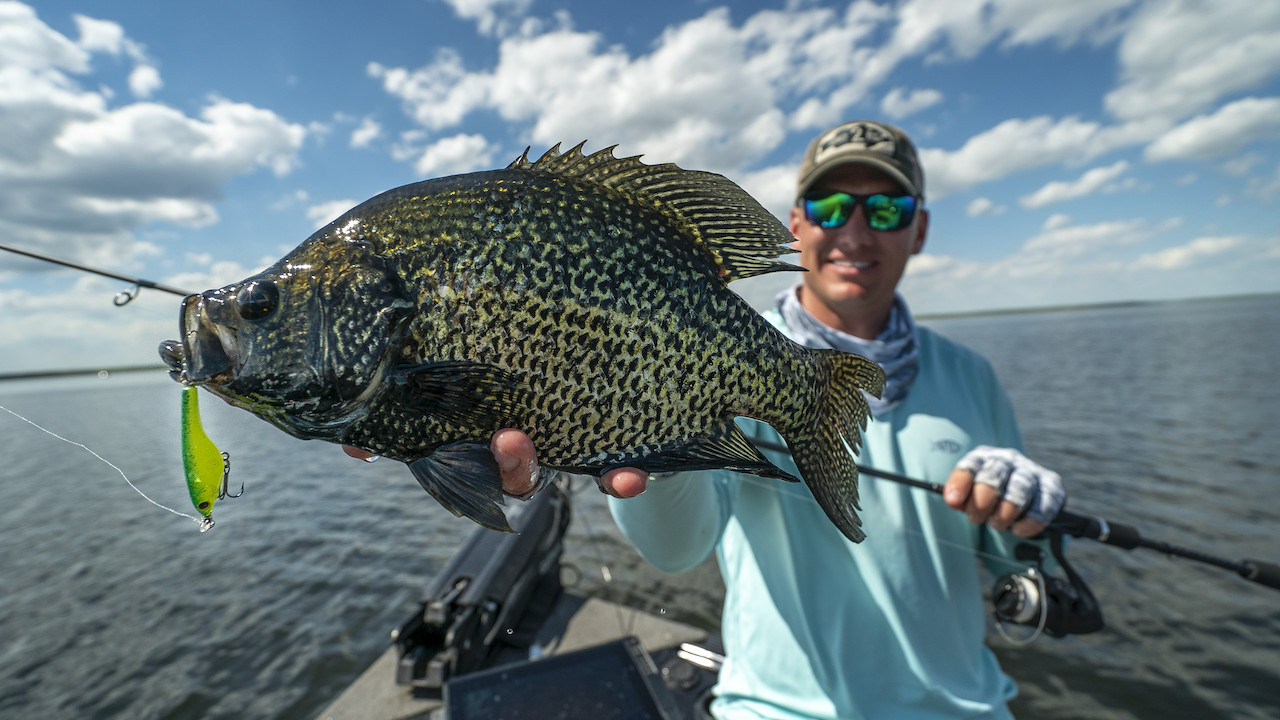 Spybait Crappies | New Lure Trends That Work!