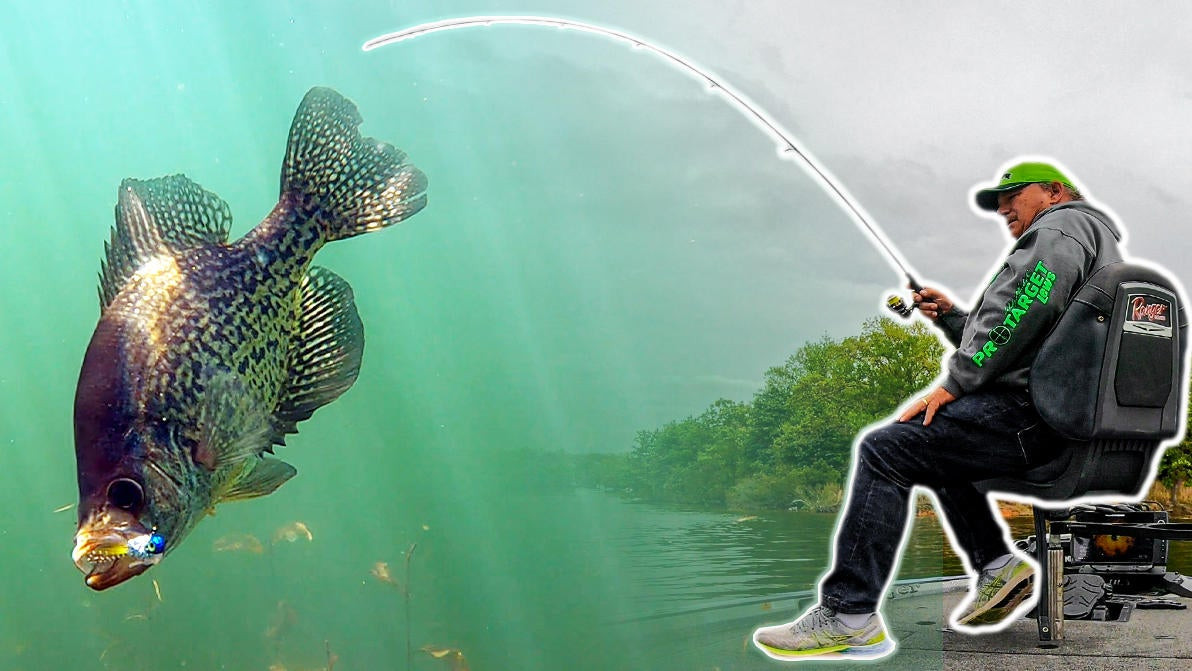 6 Tips for Successful Crappie Fishing