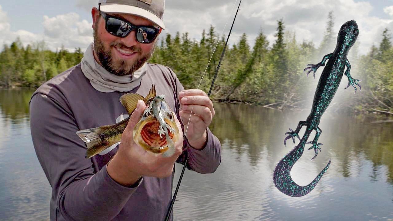 Bass Fishing Soft Plastic Lizards | Late Spring Tactics