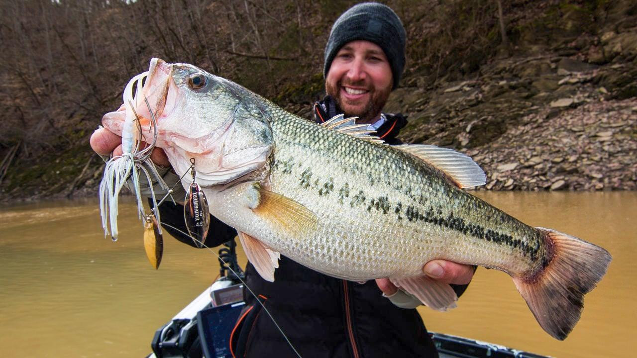 Bass Fishing After a Rain: Huge Bass on Early Spring Runoff