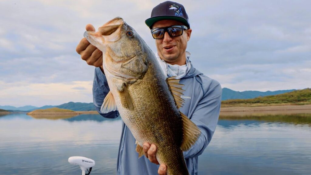 Ehrler giant topwater bass