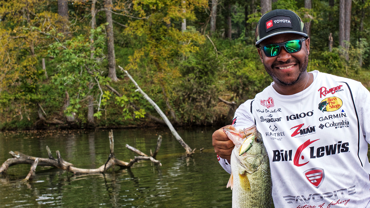 2 Easy Ways to Improve Your Lipless Crankbait Fishing this Fall