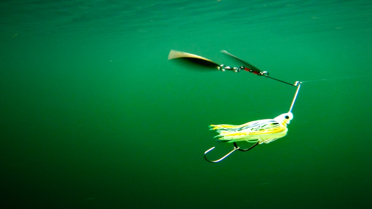 6 Spinnerbait Tips to Catch More Fall Smallmouth Bass